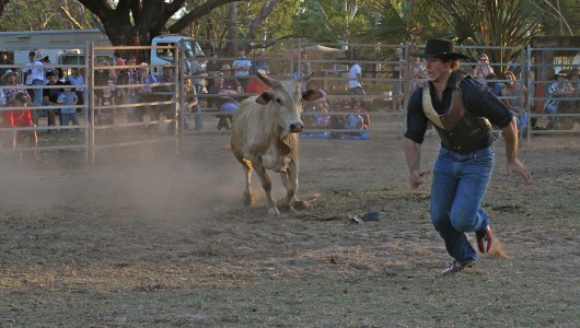 While working a rodeo in Laura, Queensland. Showmen sometimes get n the wrong side of the bull