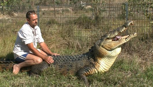 Man vs croc